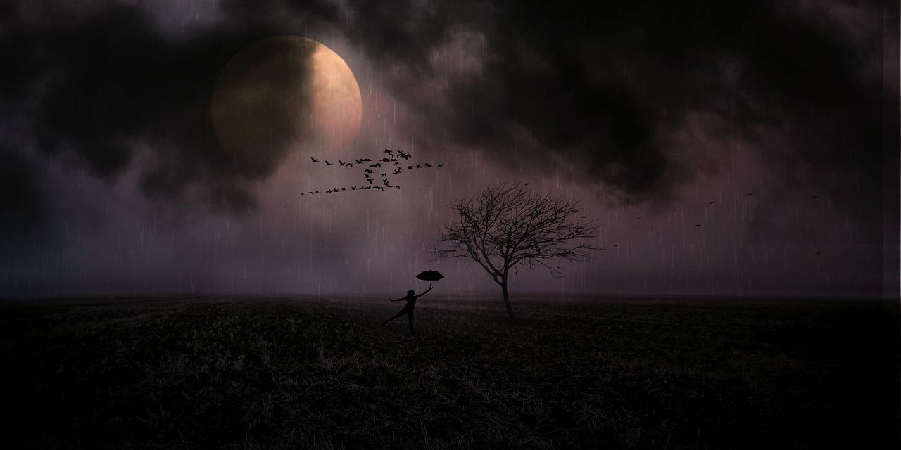 moonlight-3061068_1280